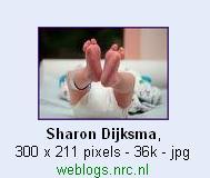 Sharon Dijksma 1.jpg